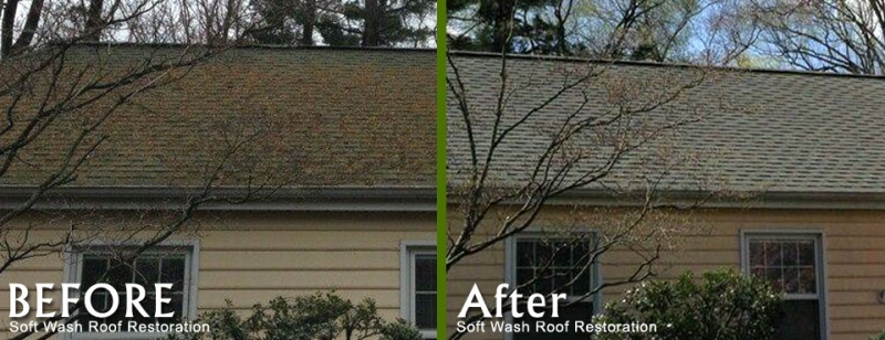 Roof Cleaning By Softwashroofrestoration Com