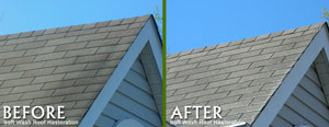 softwashroofrestoration1