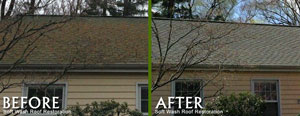 softwashroofrestoration2