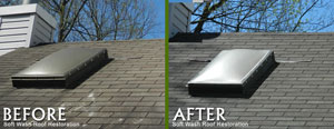 softwashroofrestoration4